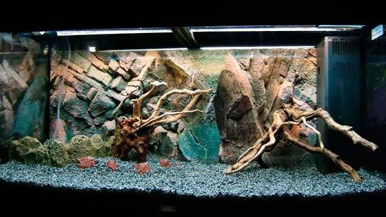 Дизайн аквариума Фото 10