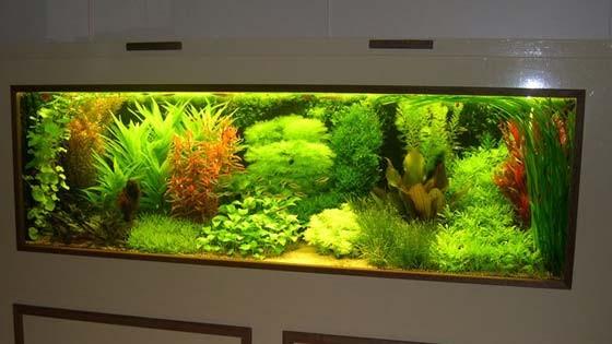 Дизайн аквариума Фото 4