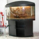 Создаем дизайн аквариума