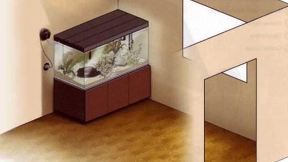 Правильная установка аквариума