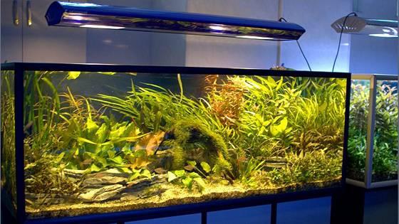 Установка аквариумов