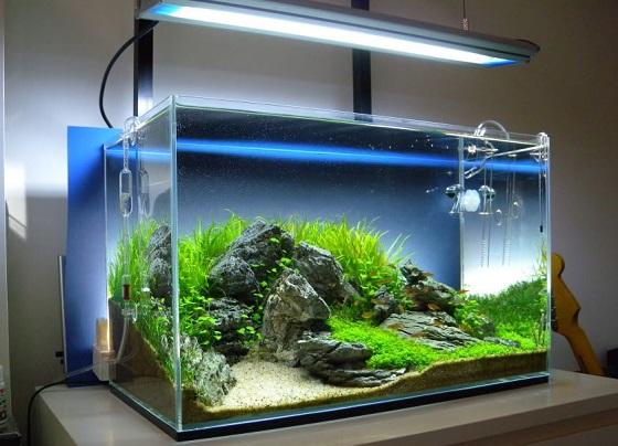 Удобное расположение аквариума