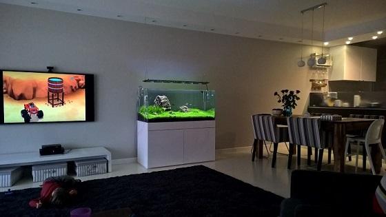 Установка аквариума в комнате